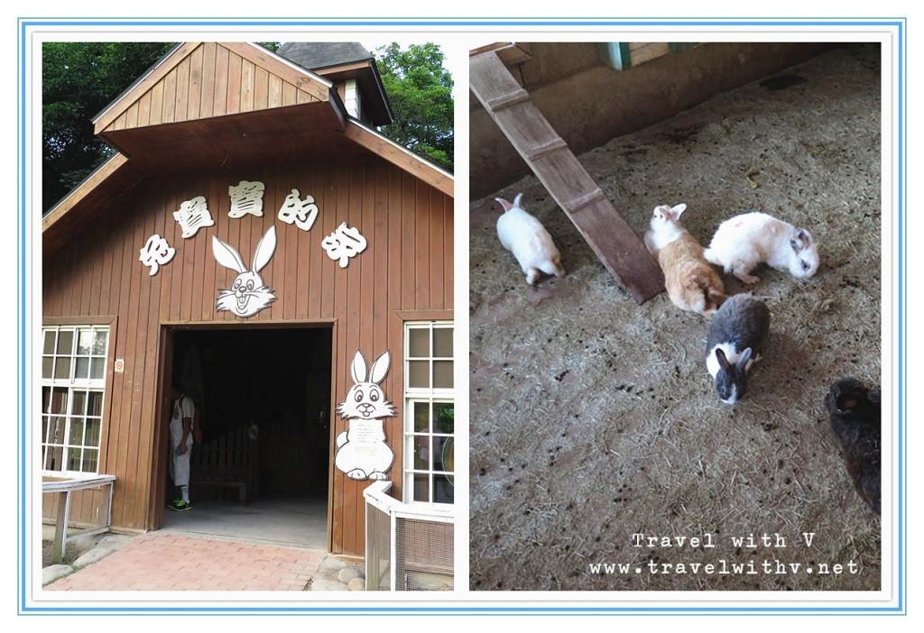 飛牛牧場 ANIMAL 5